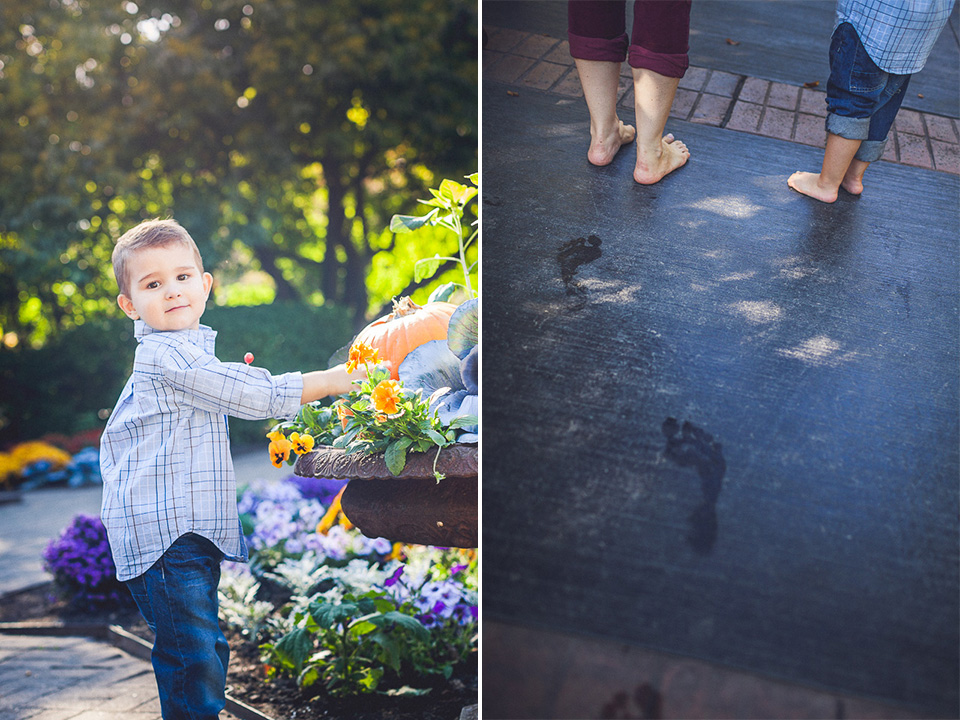 peter gubernat family photographer 14 - We're Pregnant >< Baby Announcement in Cantigny Park
