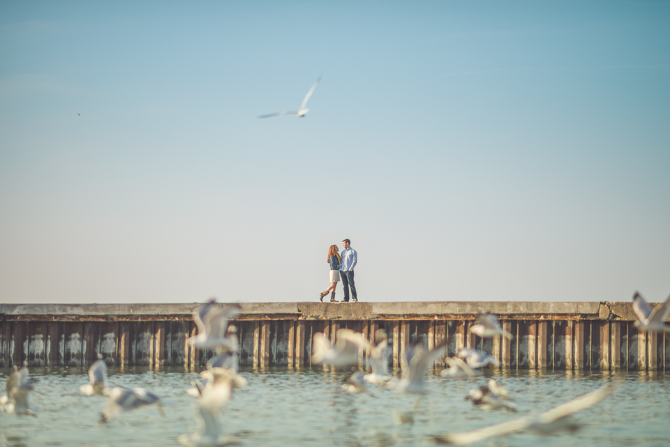 07 birds flying through photos - Amy + Pat // Chicago Engagement Photography