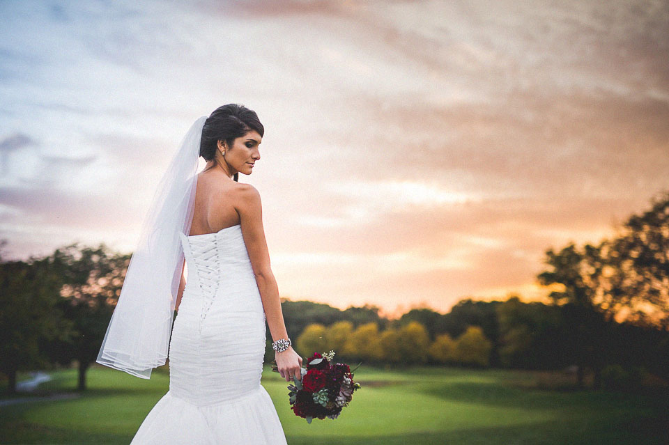 38 amazing bridal portraits in wheaton