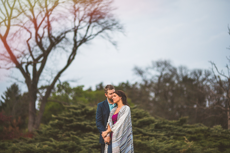 17 epic engagement photos at morton arboretum