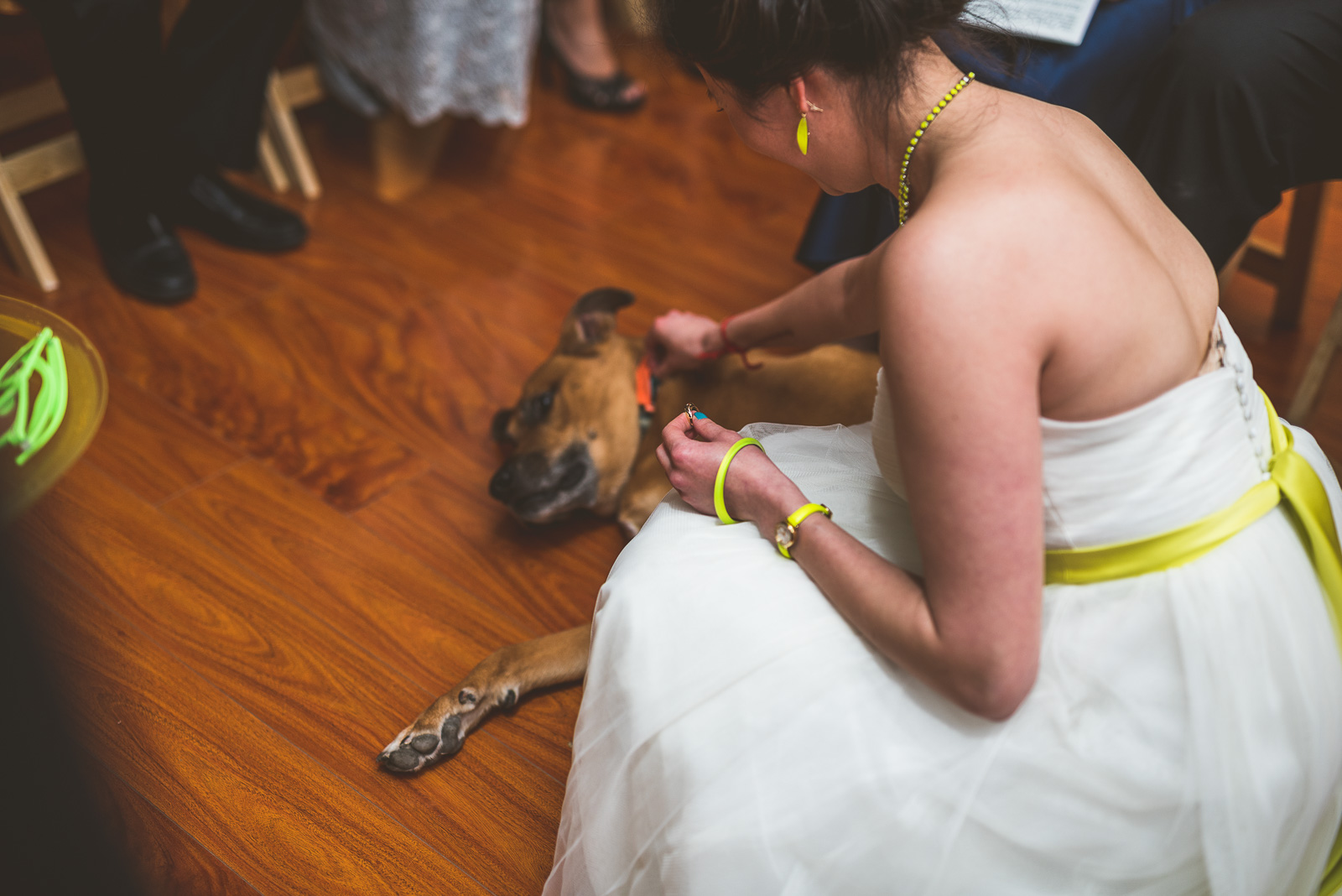 31 doggie has rings - Jackie + Raj // Chicago Wedding Photography at Floating World Gallery